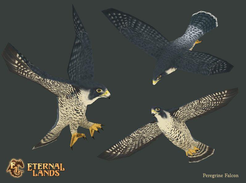 File:Creature falcon.png