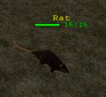 File:Creature Rat.png