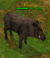Creature boar.png
